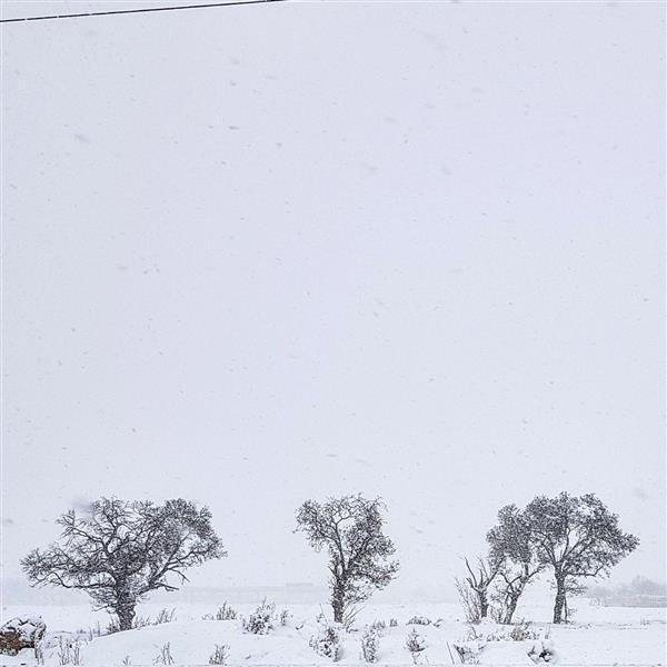 These snowy days, 2018 - Esmaeil Rezaei