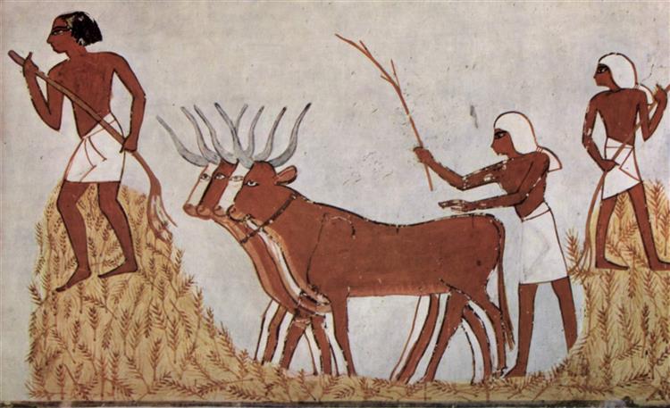 Wheat Threshing, c.1422 - c.1411 BC - Ancient Egypt