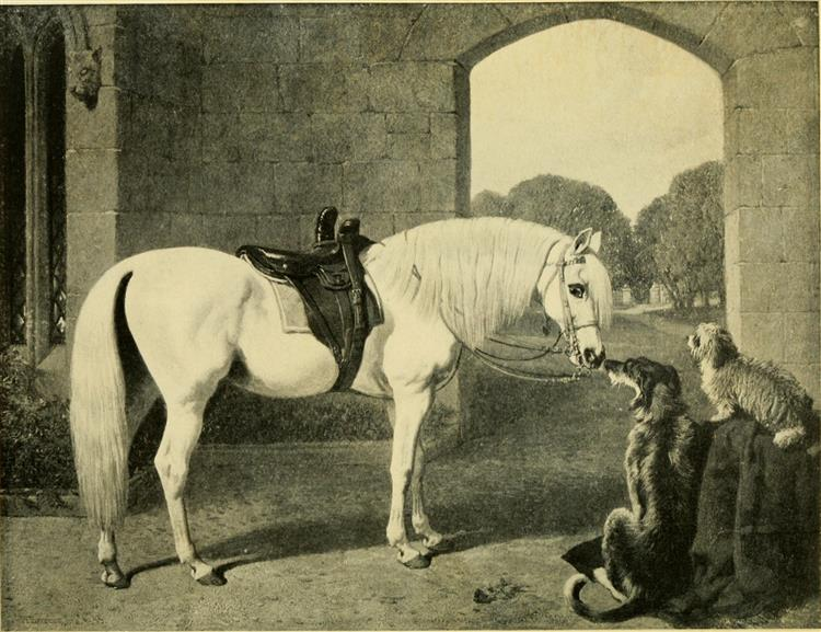 Queen Victoria's Favourite Arab and Dogs - John Frederick Herring Sr.