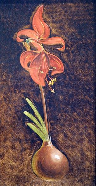 Amaryllis Formosissima - Philipp Otto Runge