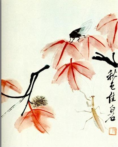 Likvidambra Taiwan and the cicada, 1950 - Qi Baishi