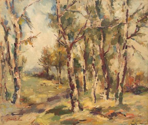Birch Woods - Adam Baltatu