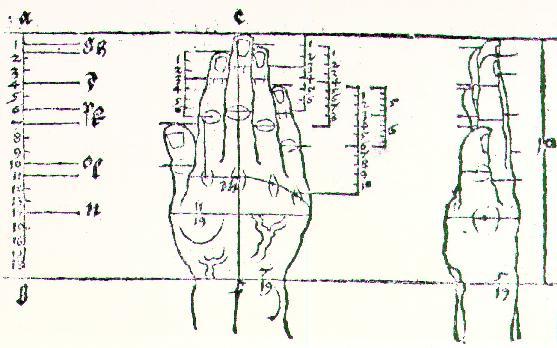 Hand, 1528 - Albrecht Durer