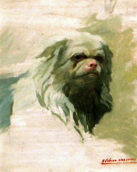 Portrait of dog, 2003 - Alejandro Cabeza