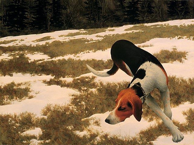 Hound in Field, 1958 - Alex Colville