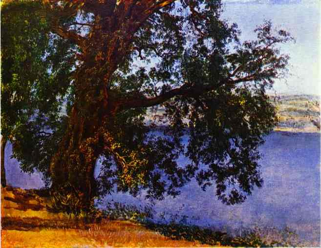 A Tree over Water in the Vicinity of Castel Gandolfo, 1850