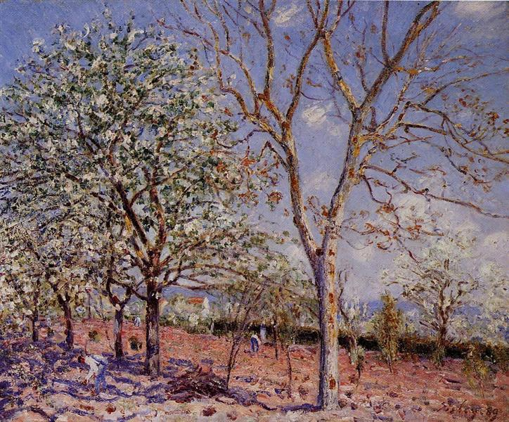 Plum and Walnut Trees in Spring, 1889 - Alfred Sisley