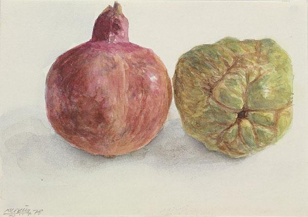 Pomegranate and Quince, 1978 - Avigdor Arikha