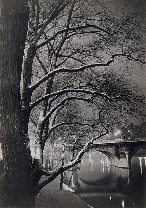 Les arbres des quais avec le Pont-Neuf, 1945