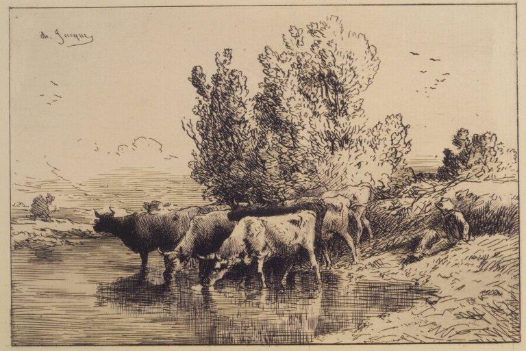 Cows, 1865