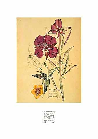 Flowers - Charles Rennie Mackintosh