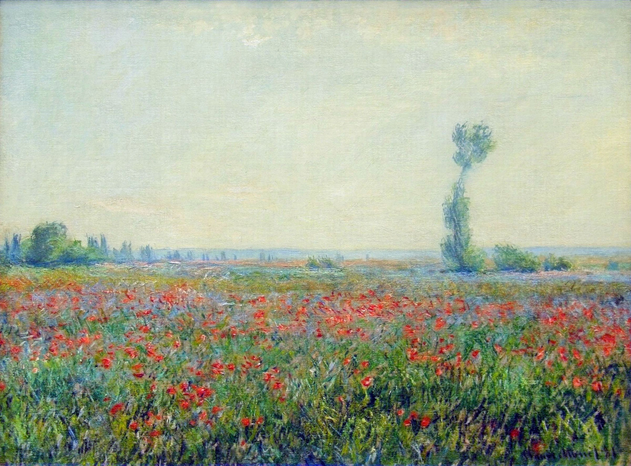 Monet Landscape Field Poppy Field - Claude M...