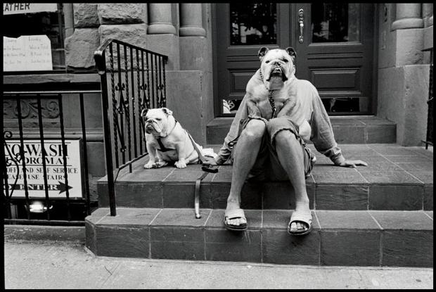 New York City, 2000 - Elliott Erwitt
