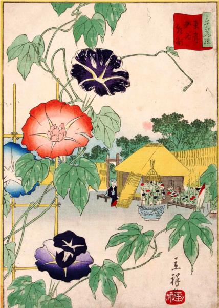 Morning glory - Hiroshige