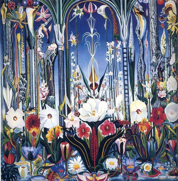 Flowers, Italy - Stella Joseph