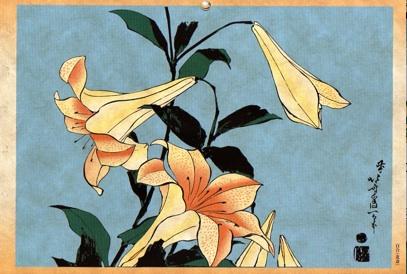Lilly - Katsushika Hokusai