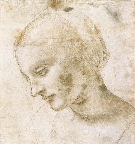 Study of a woman's head, c.1490 - Leonardo da Vinci