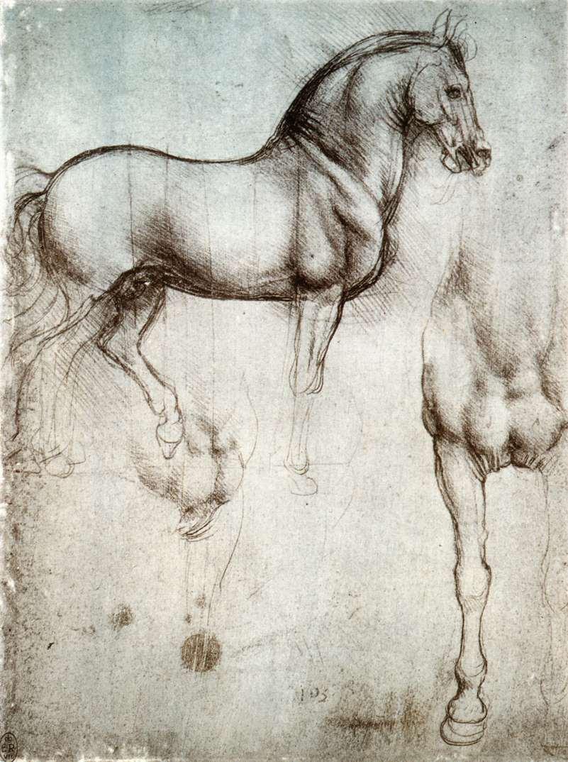 Study of horses, 1490
