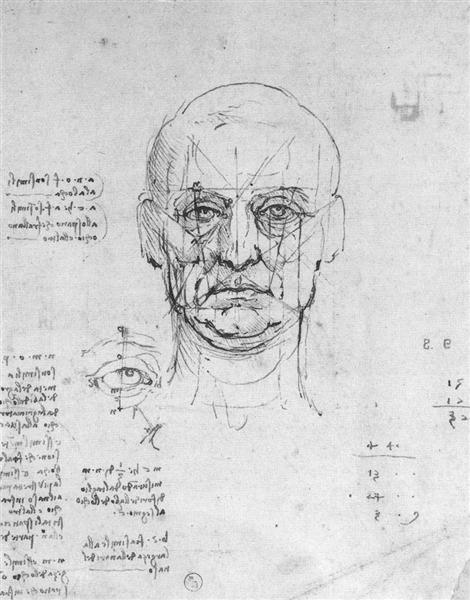 Study on the proportions of head and eyes, c.1500 - Leonardo da Vinci