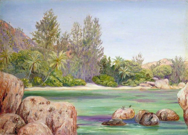 Life on the Coast of Praslin, Seychelles, 1883 - Marianne North
