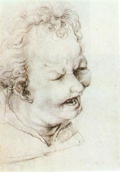 Head of a Shouting Man, c.1520 - Matthias Grünewald