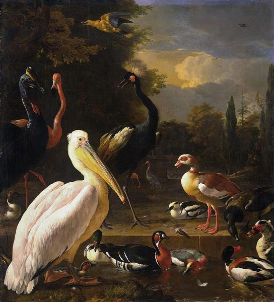 A Pelican and Other Birds Near a Pool (The Floating Feather), 1680 - Мельхиор де Хондекутер