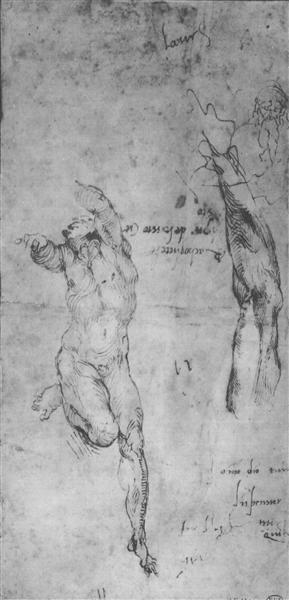 Male nude and arm of bearded man, 1504 - Мікеланджело