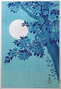 Cherry on a Moonlit Night - Ohara Koson