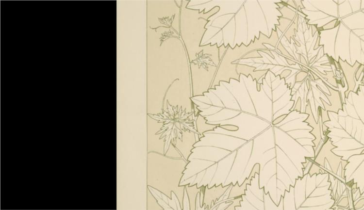 Leaves and Flowers from Nature Ornament no. 2. Vine-leaves, full size - Owen Jones