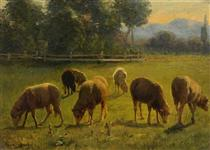 Sheep in a Landscape - Роза Бонёр
