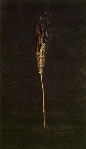 Wheat Ear, 1947 - Salvador Dali
