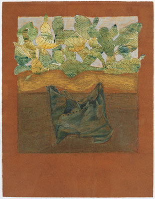 Untitled (cactus plants in background)