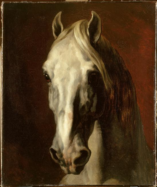 The head of white horse 1815 theodore gericault - Image tete de cheval ...