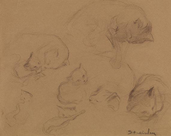 Cat Study, 1900 - Theophile Steinlen