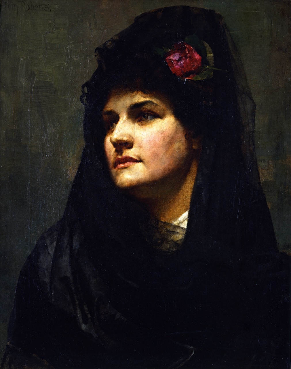 A Spanish Beauty, 1884