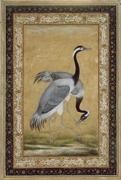 Two Cranes - Ustad Mansur