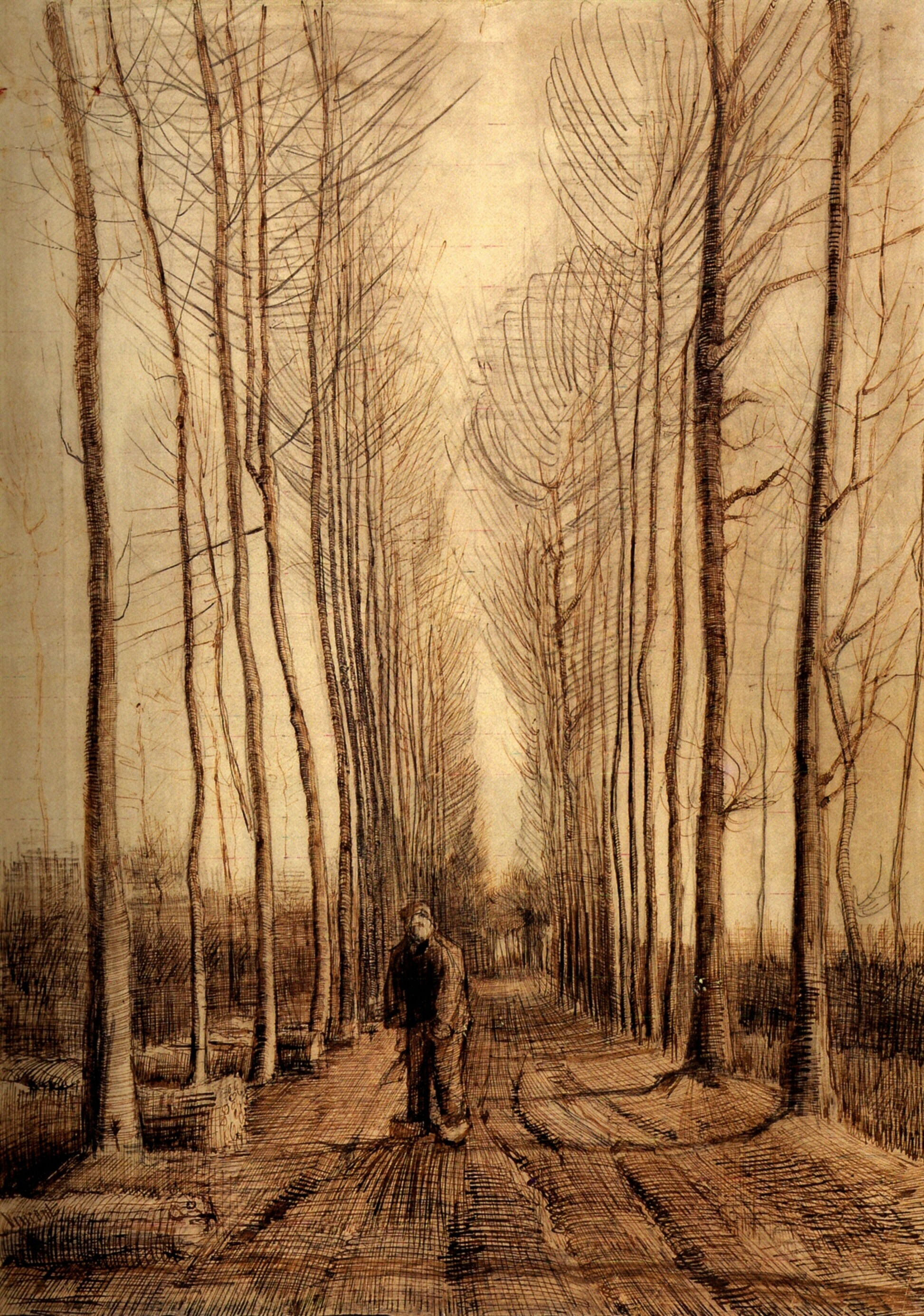 avenue of poplars 1884 vincent van gogh org avenue of poplars 1884 vincent van gogh