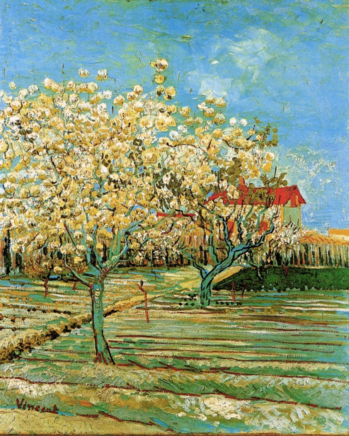 the flowering orchard by vincent van 80% off a hand made oil painting reproduction of flowering orchard, one of the most famous paintings by vincent van gogh free certificate of authenticity free shipping.