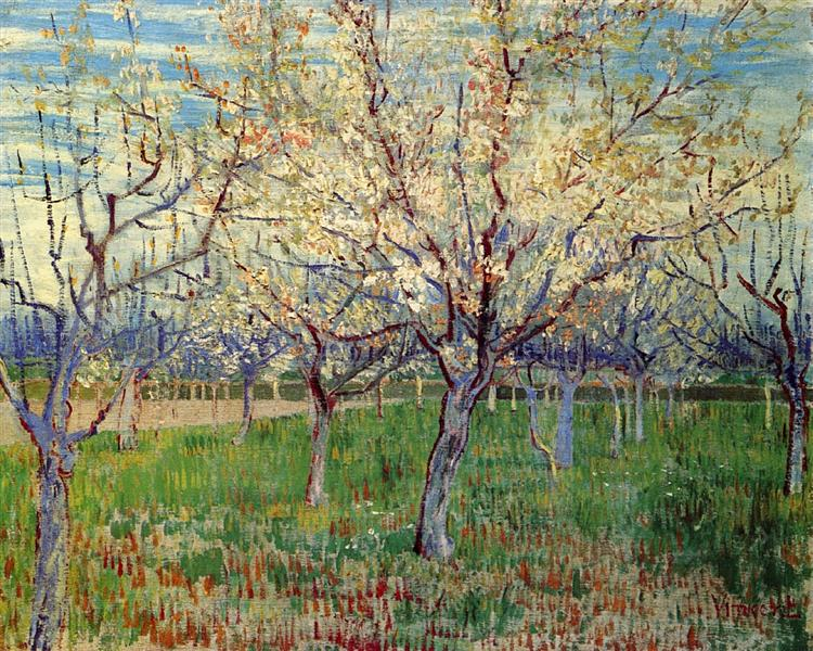 Orchard with Blossoming Apricot Trees, 1888 - Vincent van Gogh