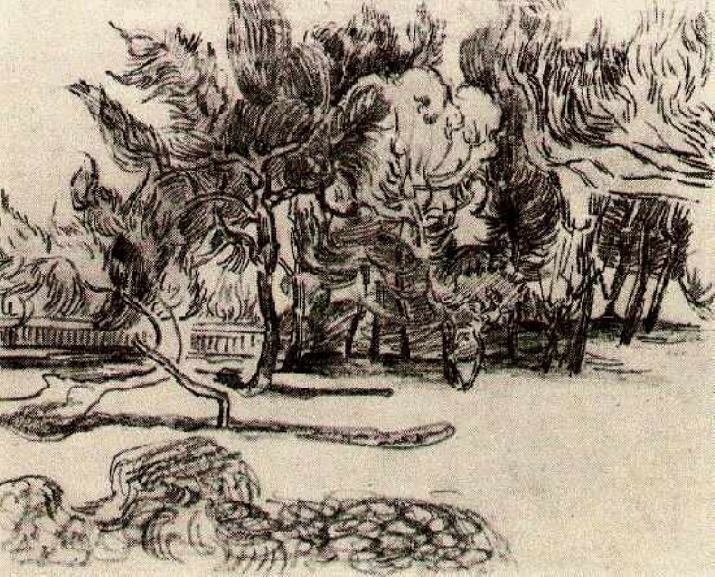 Van Gogh Drawings Trees Pine Trees near the Wa...