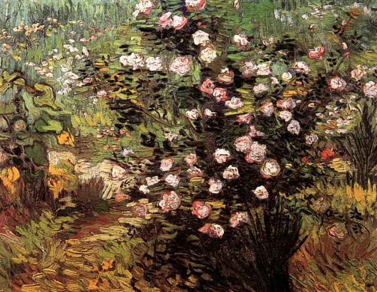 Rosebush in Blossom, 1889 - Vincent van Gogh