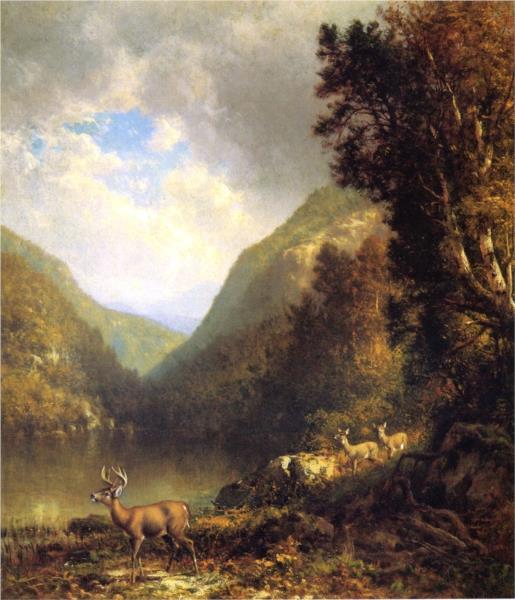 Deer in the Adirondacks, 1878 - William Hart